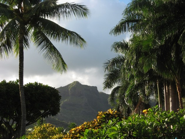 Tips on moving to Hawaii