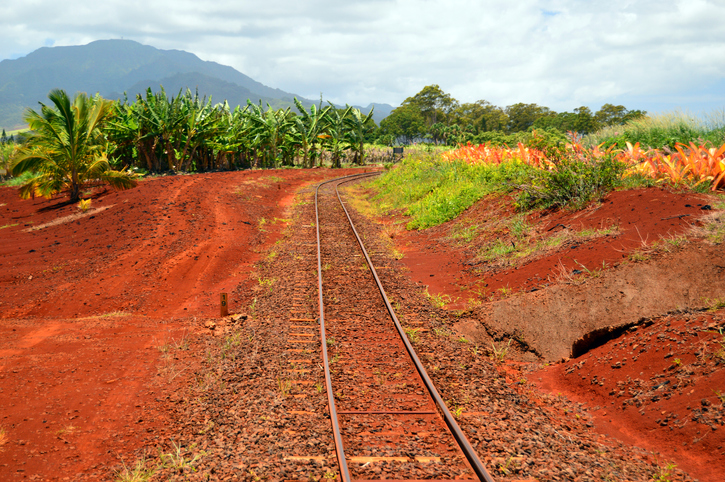 train-tracks-in-hawaii